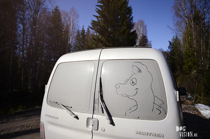 Lente in Zweden | hondenfotografie en blog | www.DOGvision.be