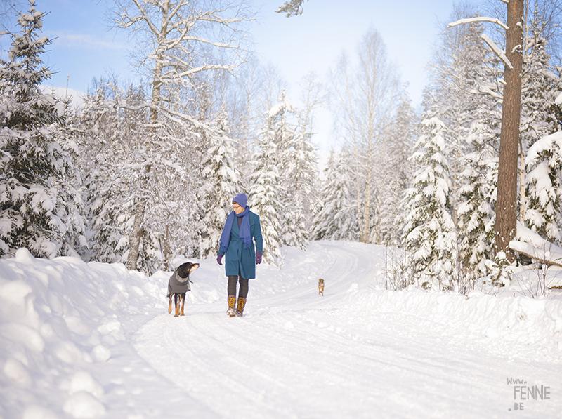 #TongueOutTuesday (06) | Blog over avontuurlijke honden en Zweden | www.DOGvision.be