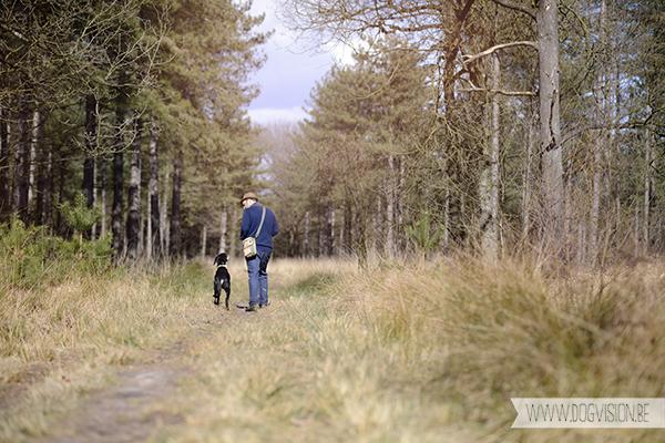 Easter 2015 | Chaamse bossen | hondenlosloopgebied Nederland | www.DOGvision.be | hondenfotografie