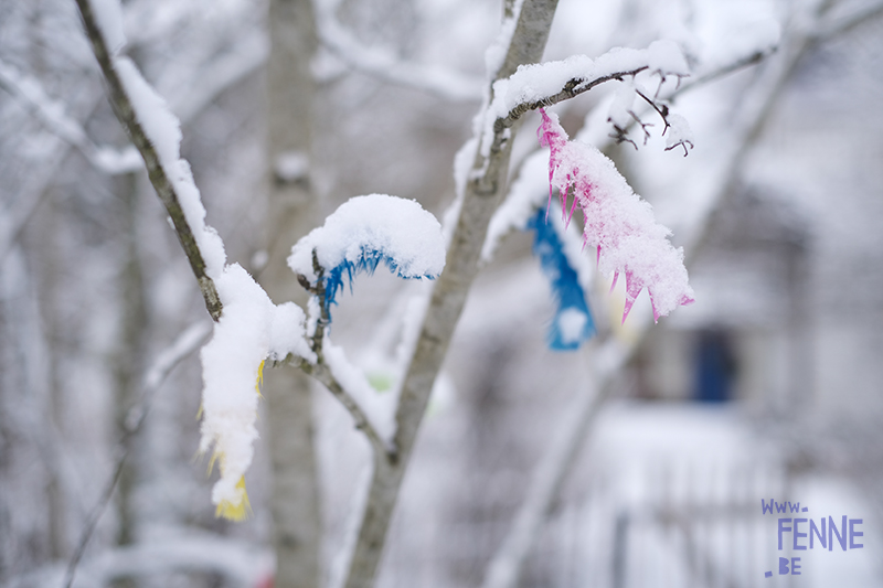 Vårvinter, spring-winter in Sweden, Easter 2021, colored feathers, Swedish Easter tradition, www.DOGvision.eu