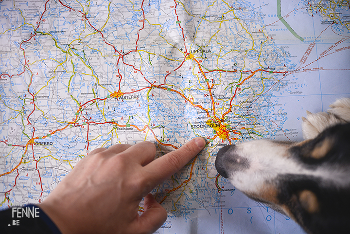 New travel plans | map, Border Collie, Stockholm| | www.DOGvision.be