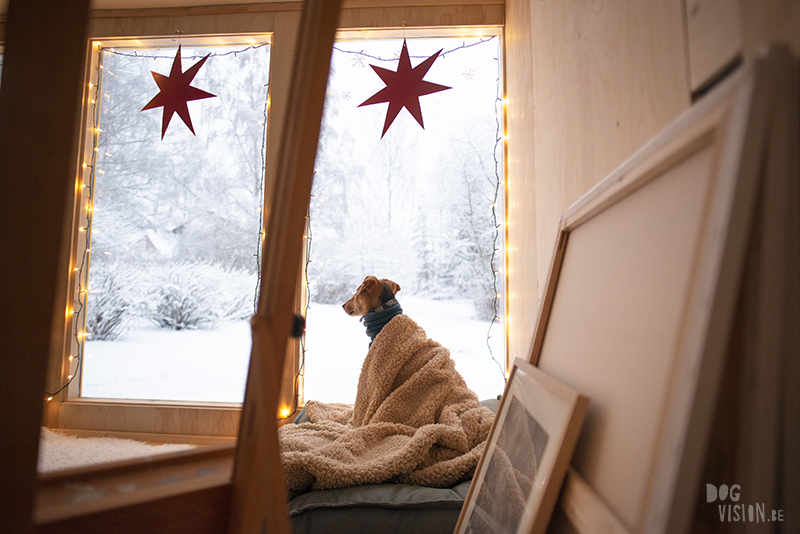 Honden in het atelier, kunst honden, hondenillustratie, honden adoptie, honden blog, honden in Zweden, Fenne, www.DOGvision.be