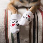 #TongueOutTuesday (11), hondenfotografie, wonen in Zweden, honden in Zweden, www.DOGvision.be