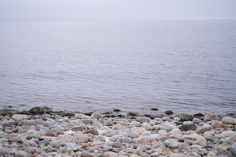 Fossil find in Sweden by www.Fenne.be