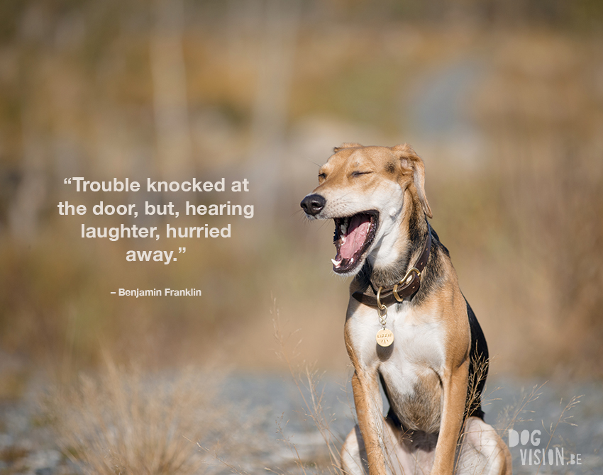 """Trouble knocked at the door, but, hearing laughter, hurried away."" – Benjamin Franklin"