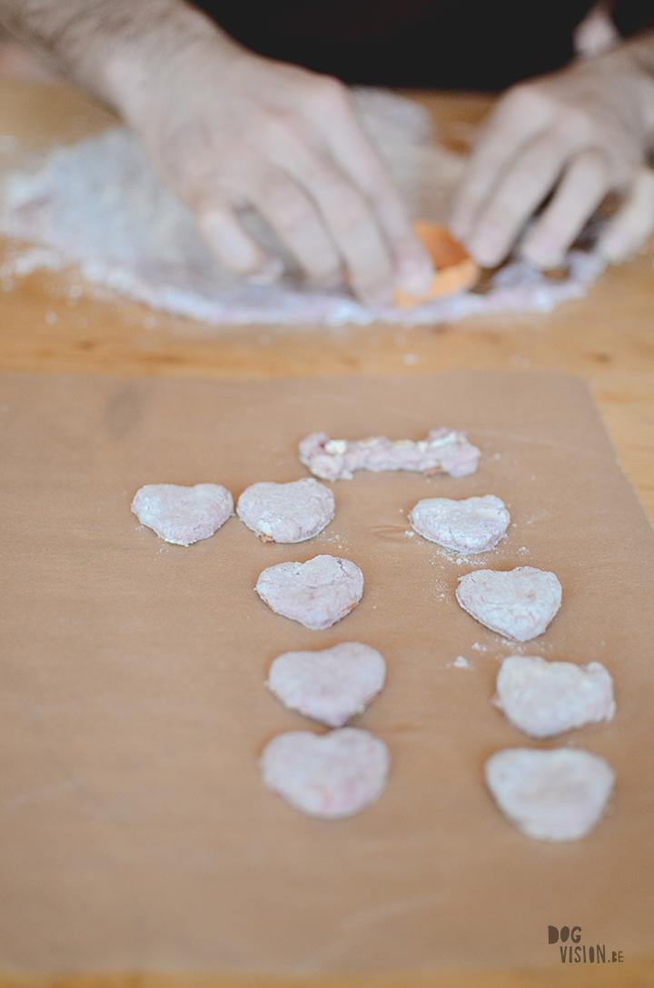 www.DOGvision.be | Koekjes voor valentijn |hondenfotografie Zweden