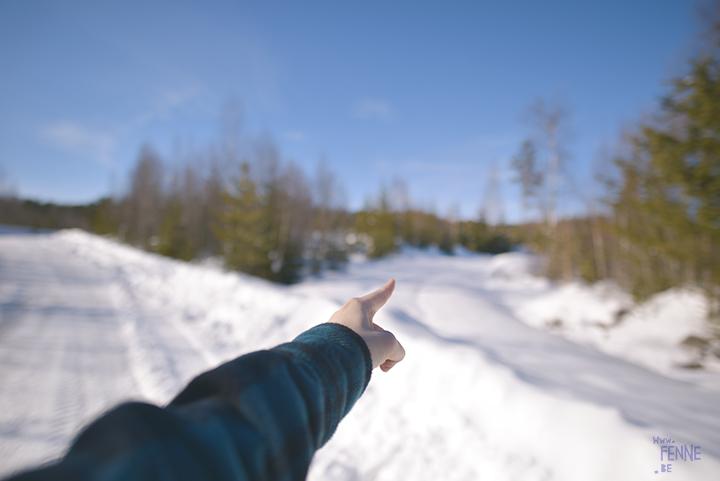 1403-38#TongueOutTuesday (12), blog over hondenfotografie en leven in Zweden op www.DOGvision.be