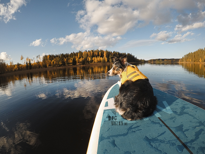 Autumn SUP | Ruffwear | Red Paddle Co | GoPro | blog on www.DOGvision.eu
