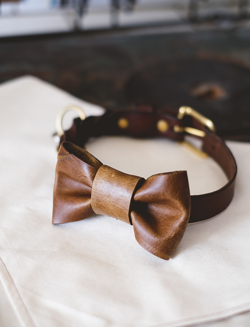 DIY leather bow tie for dogs, www.DOGvision.eu
