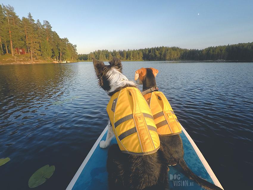 paddleboard met honden, zomer in Zweden, wandelen met honden in Zweden, ruffwear lifejacket, www.dogvision.be