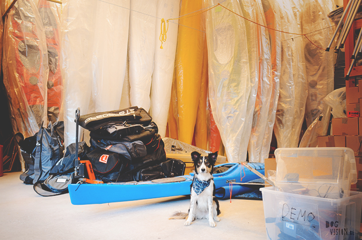Kayak shop Sweden | adventure with dogs | blog on www.DOGvision.be