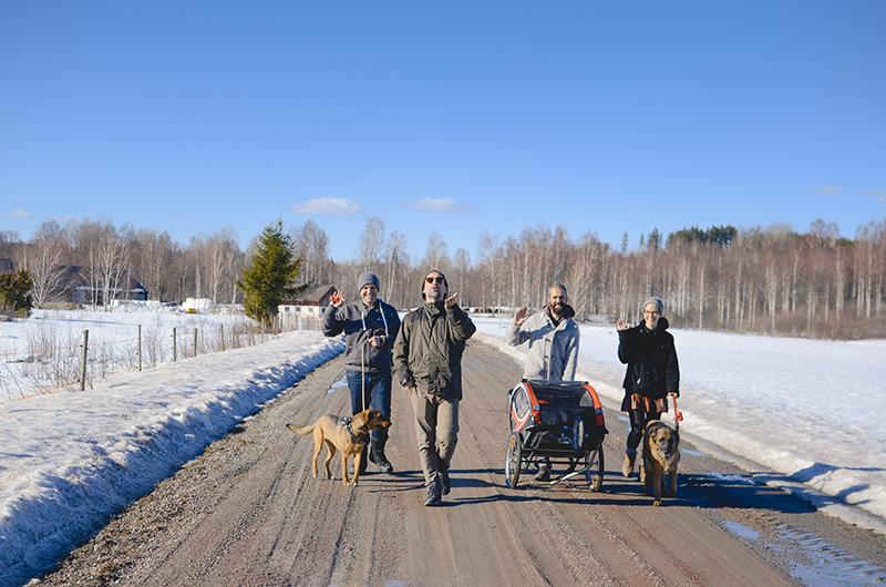 #TongueOutTuesday (13), hondenfotografie, leven in Zweden, hondenfotograaf, blog honden, www.DOGvision.be