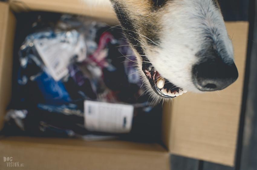 Hondenblog, sponsering door DOG Copenhagen, tuigjes voor honden. hondenwebshop, www.DOGvision.be