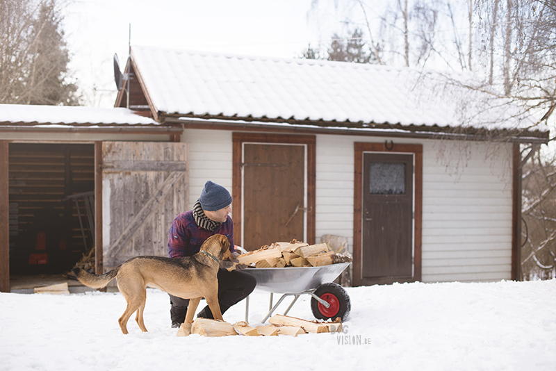 Nordic winter in Sweden, a man and his dog filling up the wood to warm the house Rescue dog Oona. www.DOGvision.eu