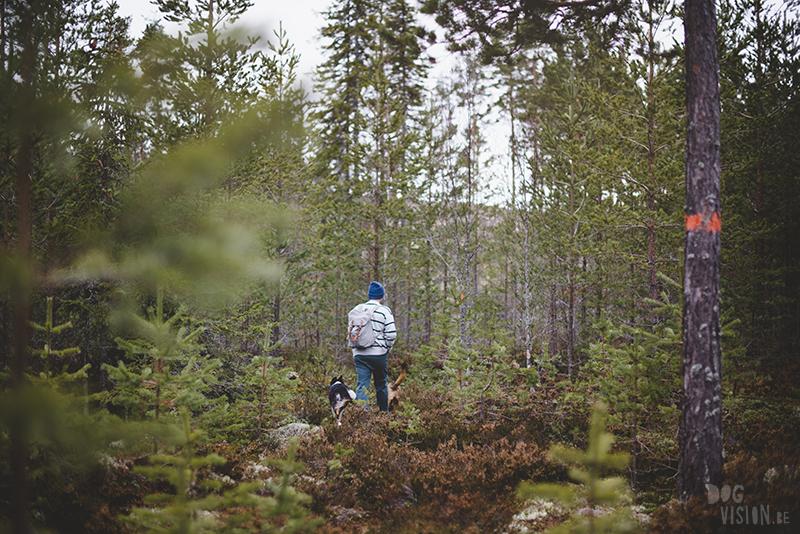 DOGvision hondenfotografie, wandelen met honden in Zweden, hutten zoeken, Dalarna, fika, www.DOGvision.be