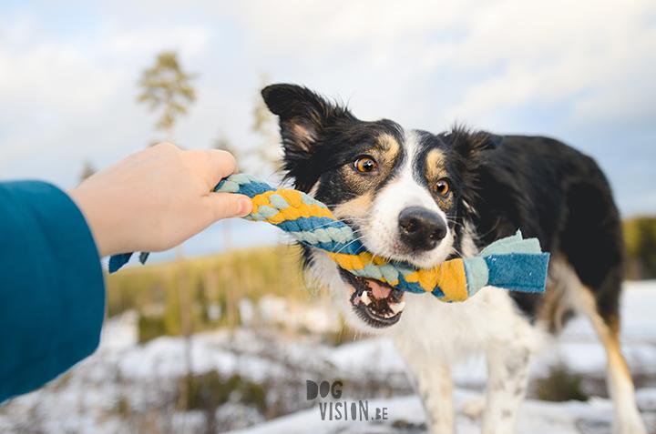 DIY voor Honden: fleece trektouw | tug of war| hondenfotografie en blog| www.DOGvision.beDIY voor Honden: fleece trektouw | tug of war| hondenfotografie en blog| www.DOGvision.be