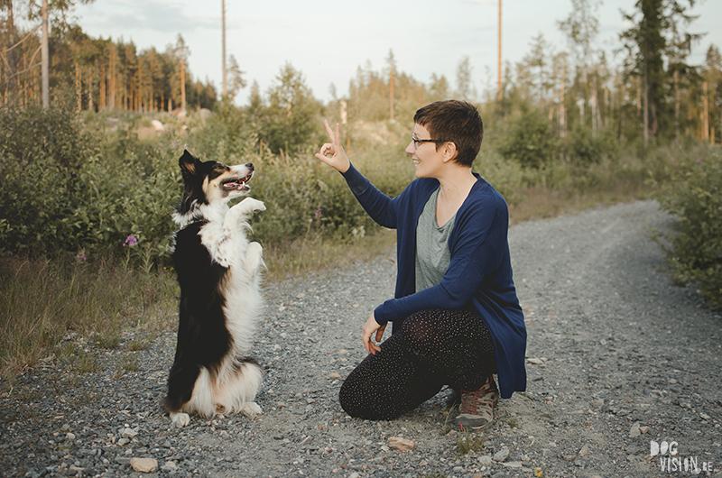 Portret Fenne Kustermans, Border Collie Mogwai, wandelen met honden in Zweden, Dalarna fotografie, www.DOGvision.be