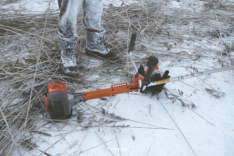 #TongueOutTuesday (07), hondenfotografie, honden in de sneeuw fotograferen, honden in Zweden, www.DOGvision.be