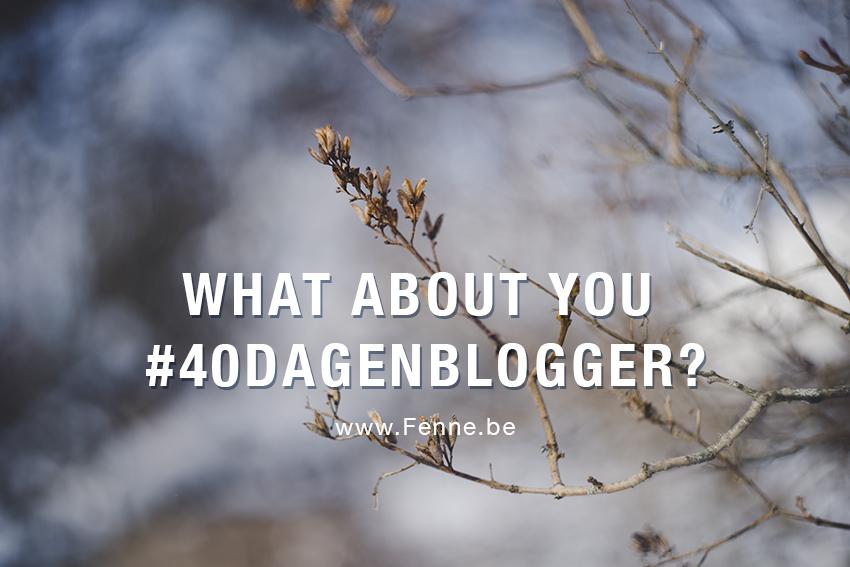 40 dagen bloggen challenge op www.DOGvision.be