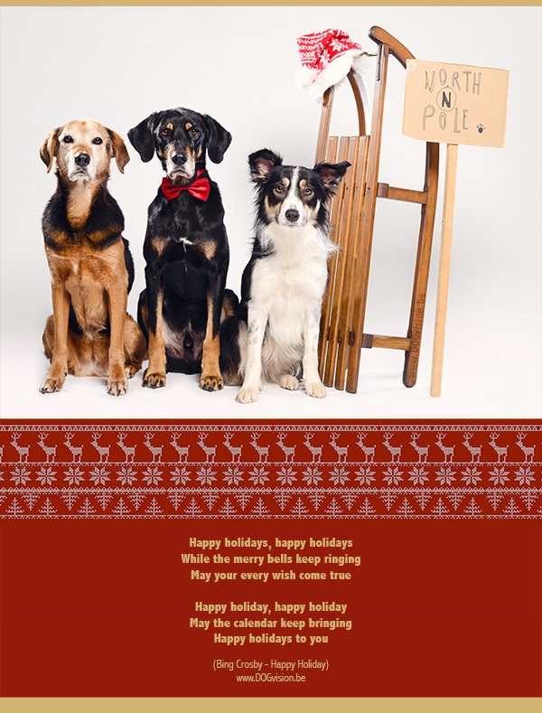 Merry Christmas! www.DOGvision.be
