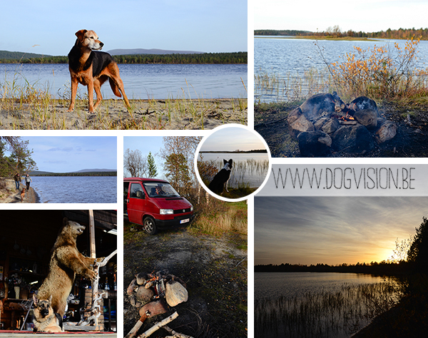 Enontekio | Scandinavie 2014 | www.DOGvision.be