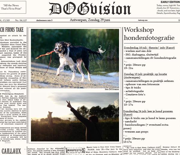 Workshop hondenfotografie | www.DOGvision.be
