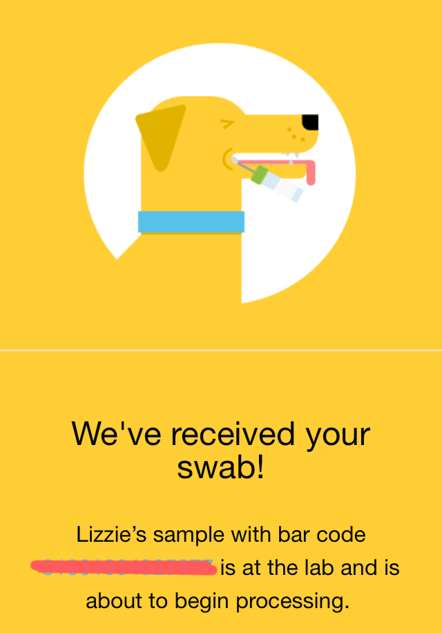 Embark DNA test, www.DOGvision.be