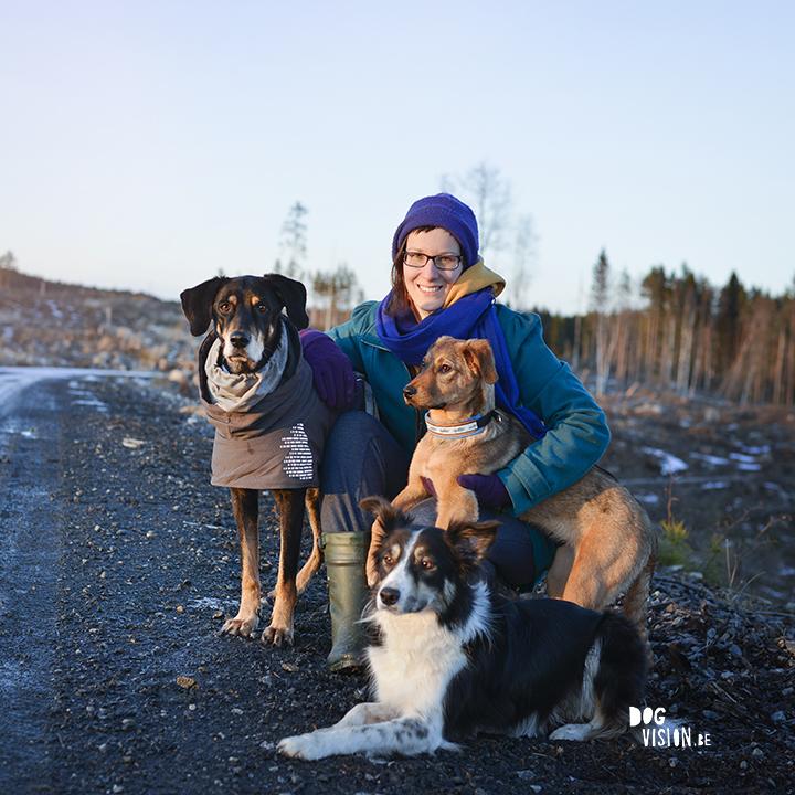 De komst van Oona | hondenfotografie DOGvision | Zweden | www.DOGvision.be