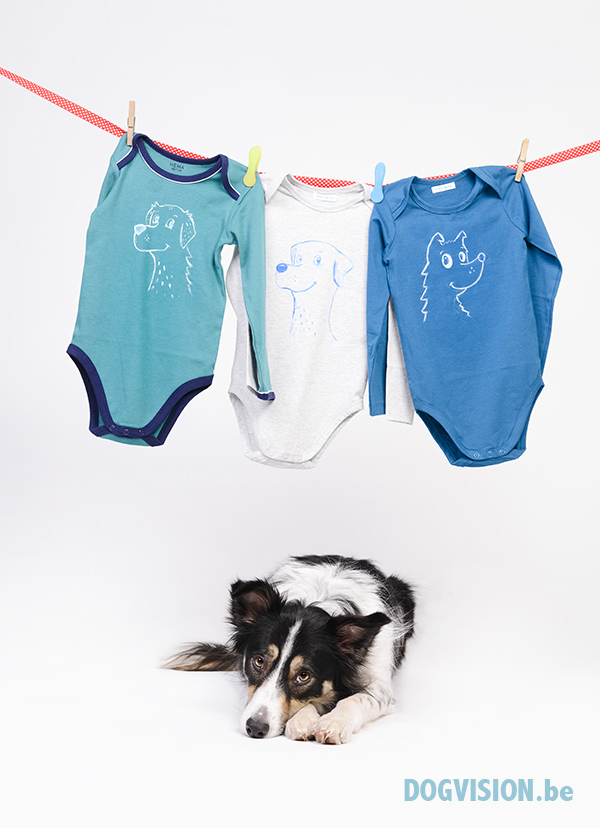 Painted child clothing with dogs | www.DOGvision.be | Mogwai- Border collie