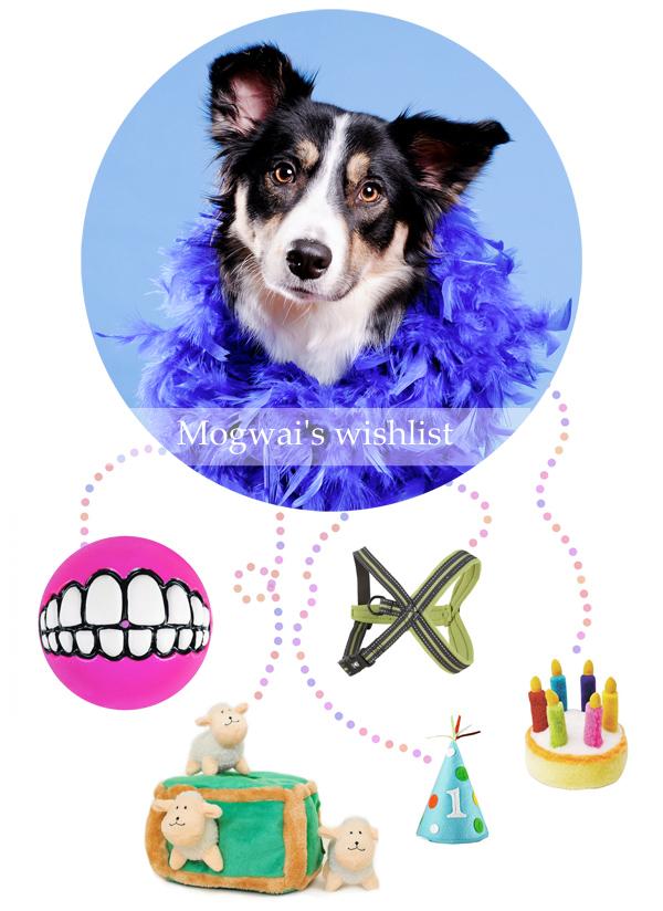 Mogwai's wishlist | www.DOGvision.be