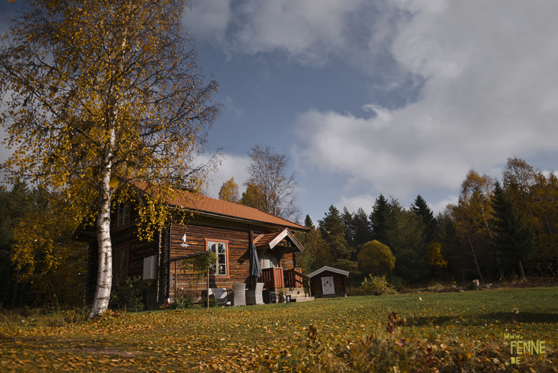 Traveling with dogs: a charming cottage in Orsa (Dalarna/Sweden)  Reizen met honden, Dalarna, Zweden   blog on www.DOGvision.be 