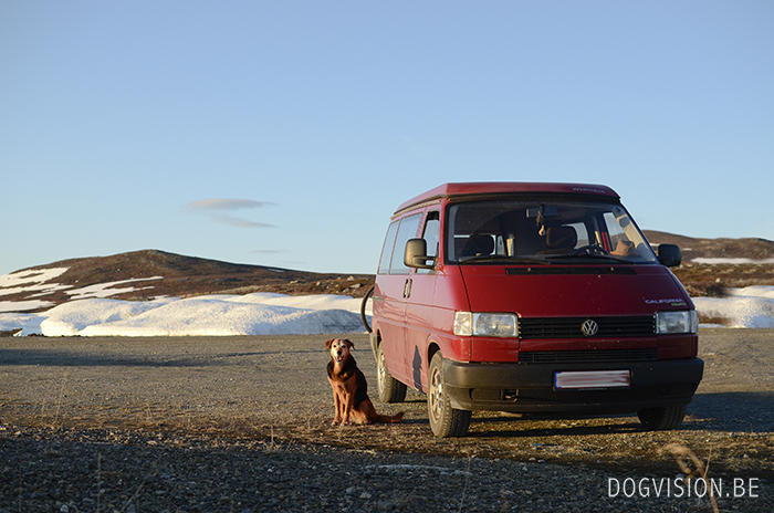 Lapland | Traveling with dogs | www.DOGvision.be