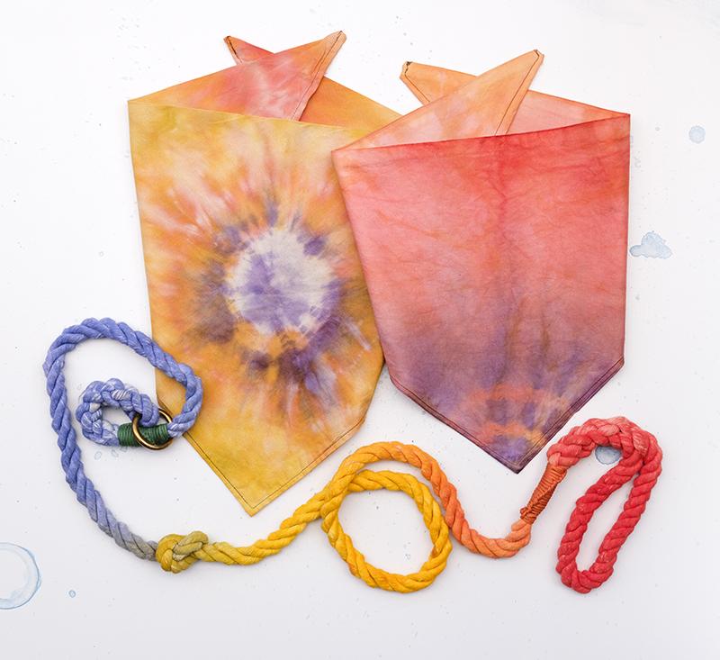 DIY dog tie dye summer bandana, dog craft, dog blog, www.DOGvision.eu