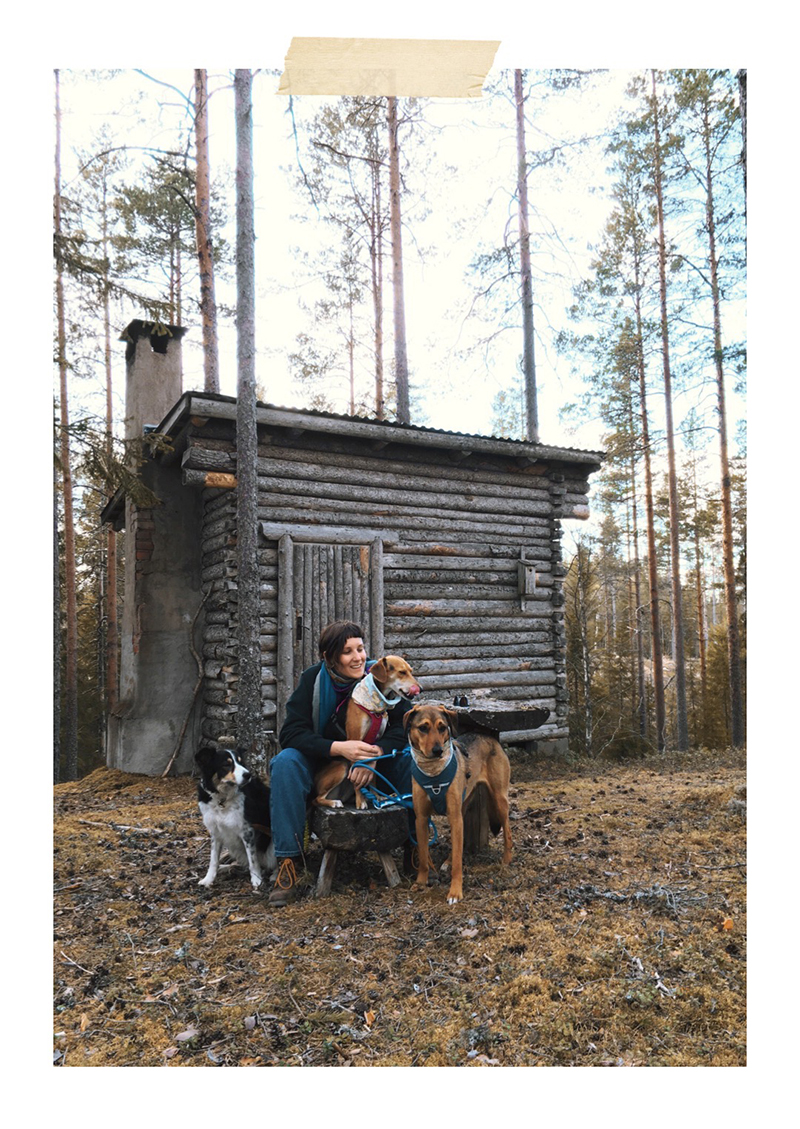 #TongueOutTuesday (22), Fenne Kustermans dog photographer and artist Sweden, hiking with dogs in Sweden, dog blog, adventures with dogs, www.DOGvision.eu