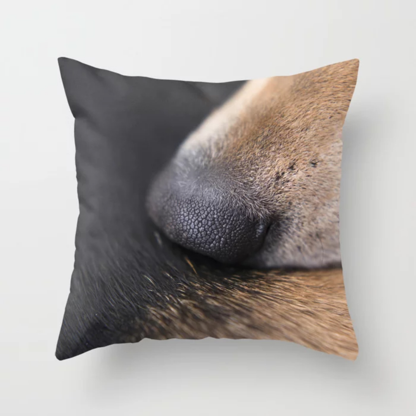 DOGvision, Fenne Kustermans, gifts for dog lovers, art prints, and wall art for dog lovers, www.DOGvision.eu - society6.com/dogvision