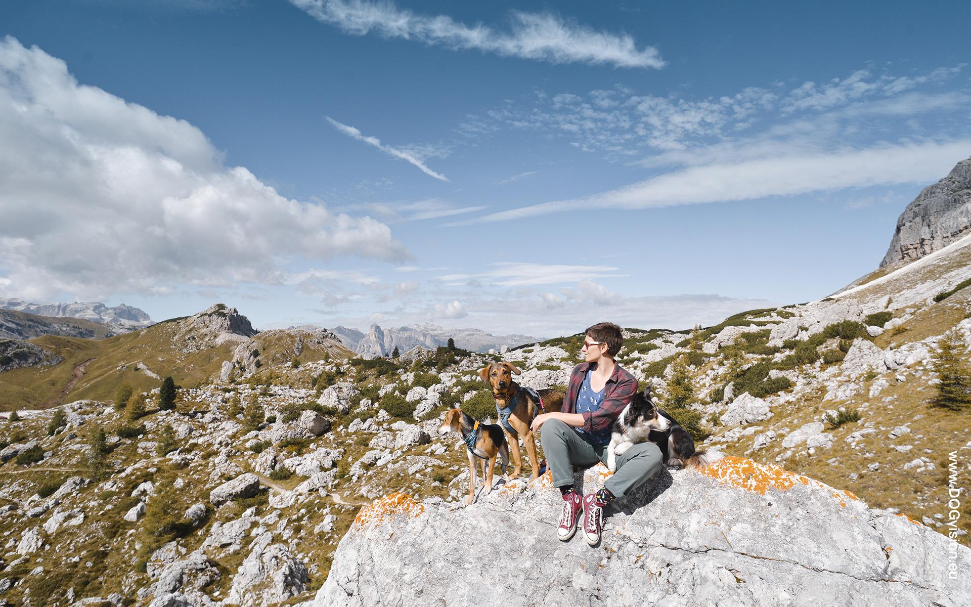 hondenfotograaf op reis in Europa, reizen met honden, commerciele hondenfotografie, www.DOGvision.be