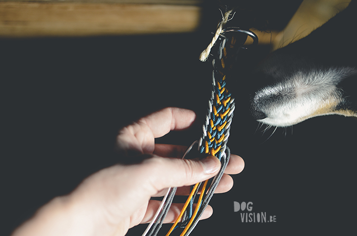 Paracord hondenhalsband | www.DOGvision.be