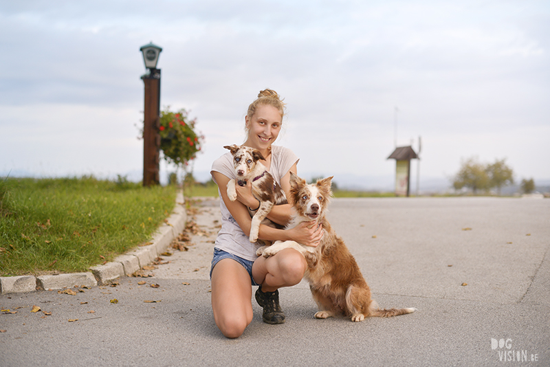 Anja Troha, road trip with dogs to Slovenia, traveling with dogs, dog photographer, dog blogger, creative dog photography, www.DOGvision.eu