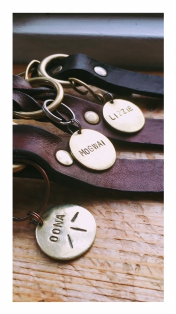 Dog tags and collars for safety and visibility. www.DOGvision.eu