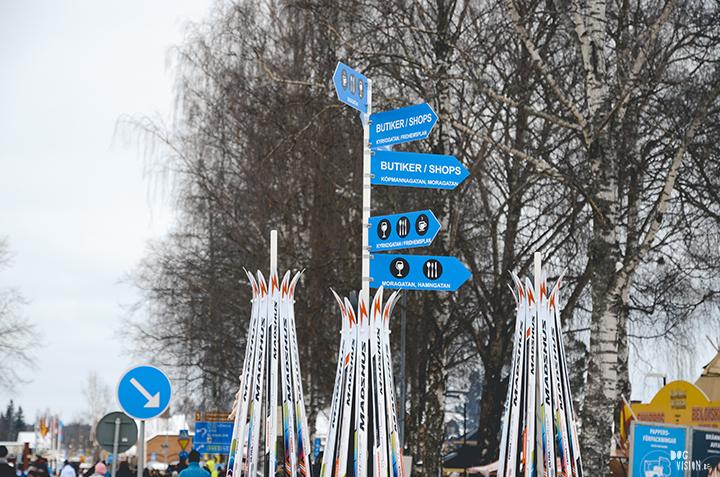 Vasaloppet 2018, Dalarna, Zweden | honden blog, hondenfotografie | www.DOGvision.be